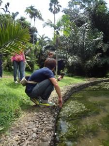 Darmasiswa Students UAJ go to Bogor (3)