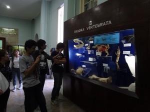 Darmasiswa Students UAJ go to Bogor (5)